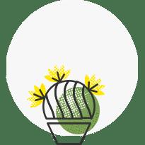 Taimede hooldus