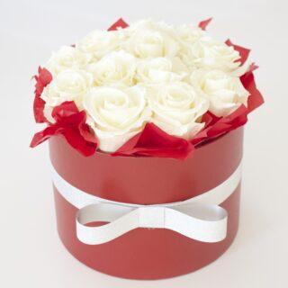 Uinuvad valged roosid 12TK
