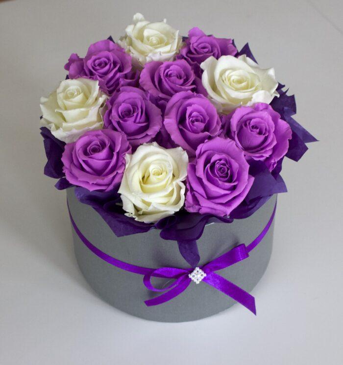 Uinuvad lillad-valged roosid 12TK