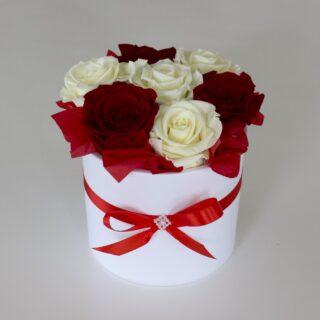 Uinuvad valged-punased roosid 7TK