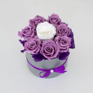 Uinuvad pastell-lillad roosid 8TK