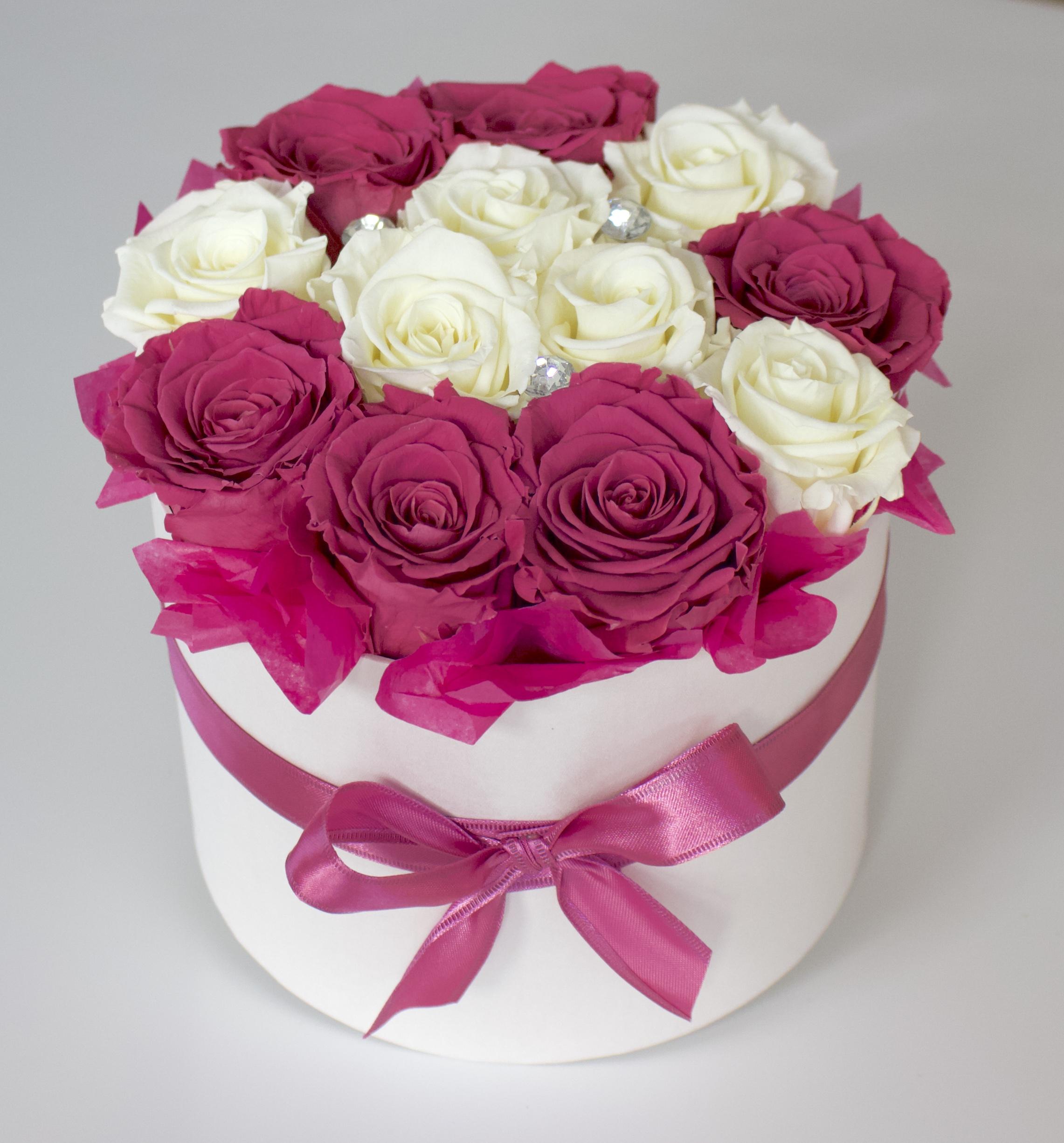 Uinuvad tumeroosad-valged roosid 12TK
