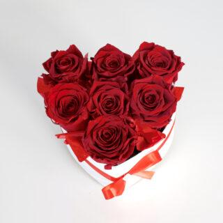 Uinuvad punased roosid südamega karbis 7TK