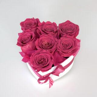 Uinuvad tumeroosad roosid südamega karbis 7TK