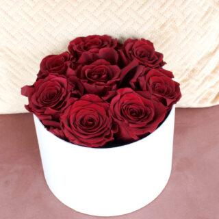 Uinuvad punased roosid 8TK