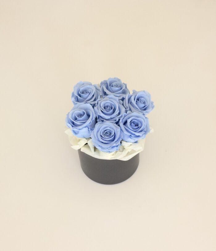 Uinuvad helesinised roosid 7TK