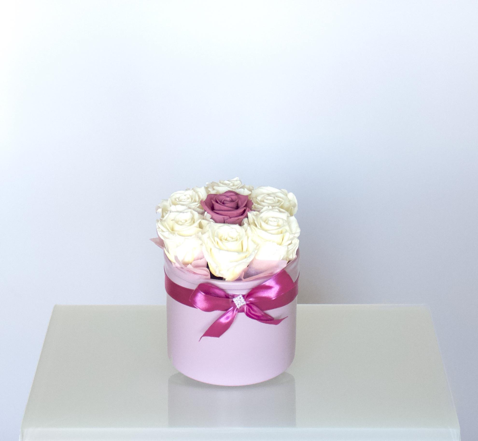 Uinuvad valged-roosad roosid 7TK
